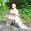 "Paul Sherwood - just short of the ""ton"" - 98lb catfish"