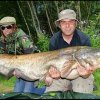 "Pete ""The Dogger:"" ONE HUNDRED AND TWENTY SEVEN (yes, that's 127lbs) of catfish on boilie"